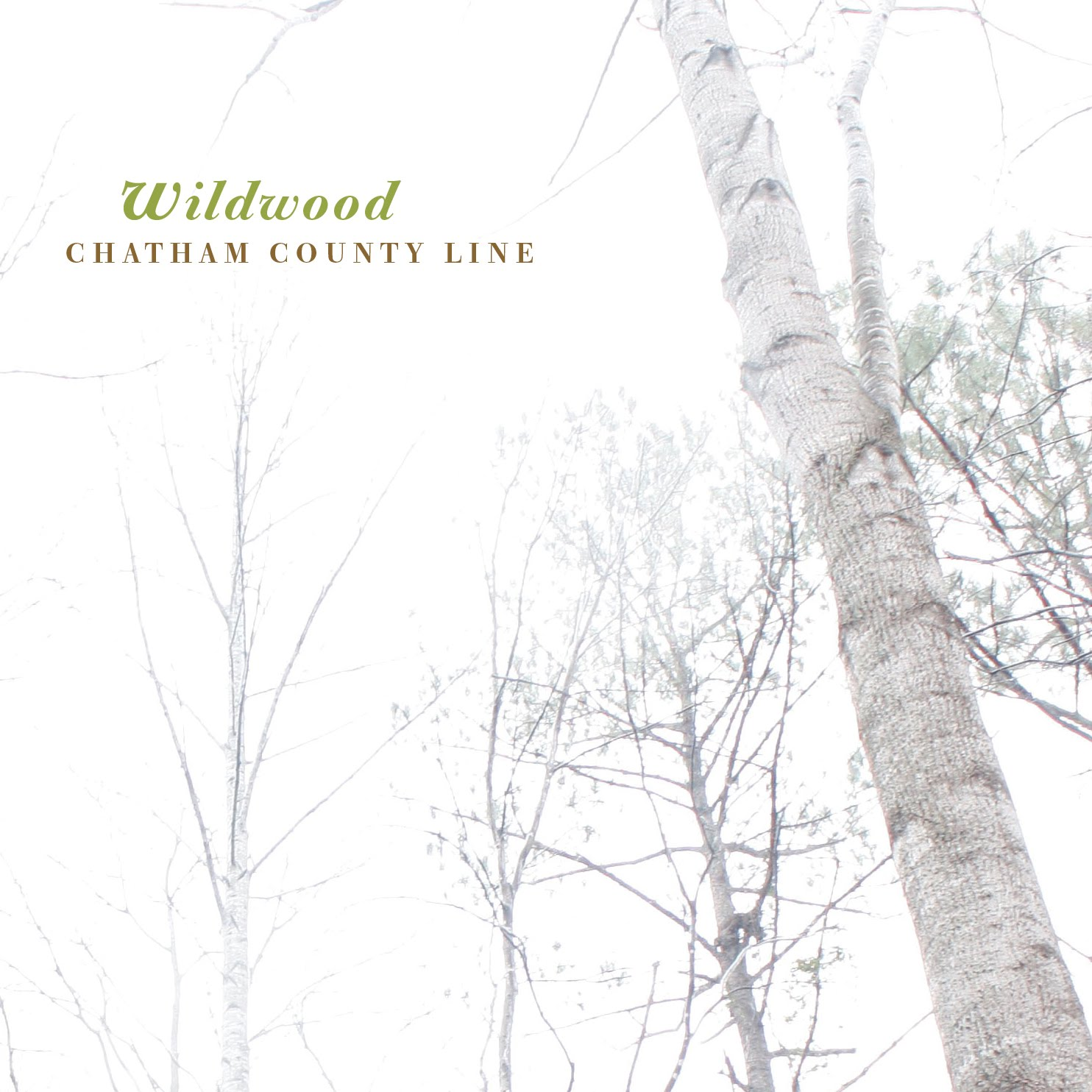 chatam-county-line-wildwood-recensione