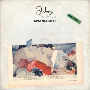 Recensione-Swanlights-Antony-Johnsons
