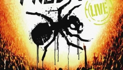 recensione-the-prodigy_worlds-on-fire-cd-dvd-live