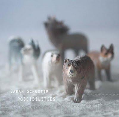 Sarah Schuster- Possibilities