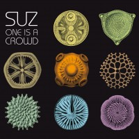 suz-one-is-a-crowd
