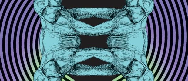 Appaloosa- Trance44