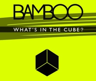 bamboo-what-s-in-the-cube
