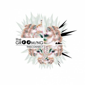 The Grooming- Thisconnect