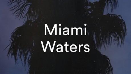 the-das-miami-waters