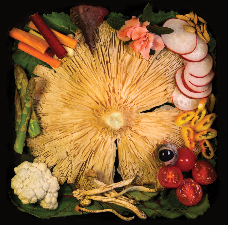 Acid Baby Jesus- Vegetable Ep