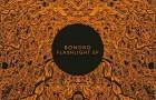 Bonobo: Flashlight EP