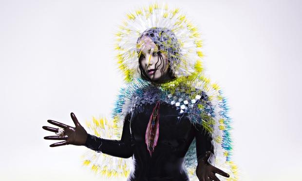 Björk's Vulnicura