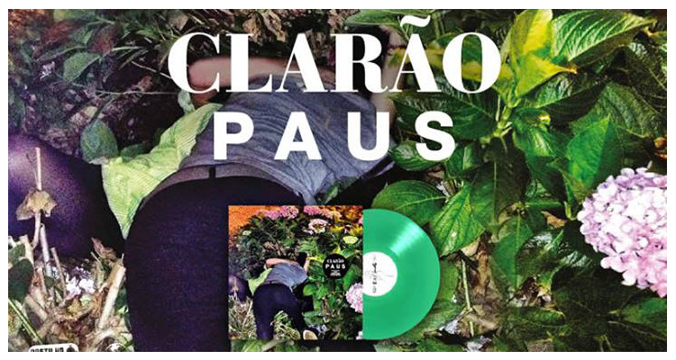 Paus- Clarao