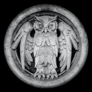 recensione-Monarchy- Abnocto