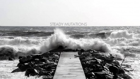 Andrea Presciuttini- Steady Mutations