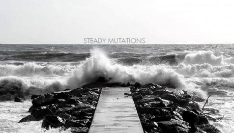 Andrea Presciuttini- Steady Mutations