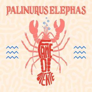 Palinurus Elephas- Fame di Niente