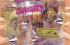 Hawaii Zombies: recensione disco omonimo
