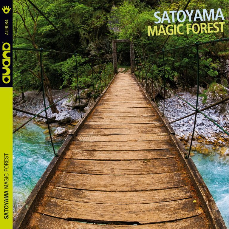 recensione-Satoyama- Magic Forest