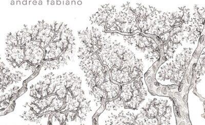 Andrea Fabiano recensione La Timidezza delle Chiome
