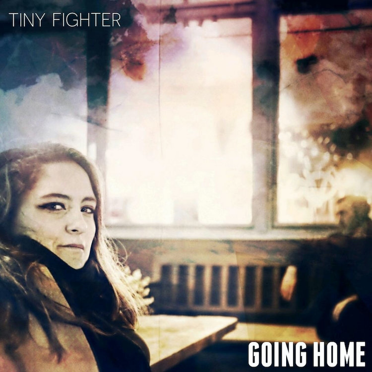 Tiny Fighter Going Home recensione