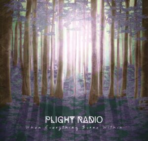 Plight Radio- recensione di When Everythong Burns Within